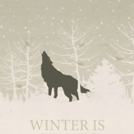 print_winter_is_coming_salt_and_paper_02